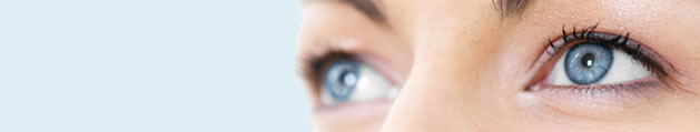 Albert J. Dal Canto, M.D. -- Cosmetic & Reconstructive Eye Surgery